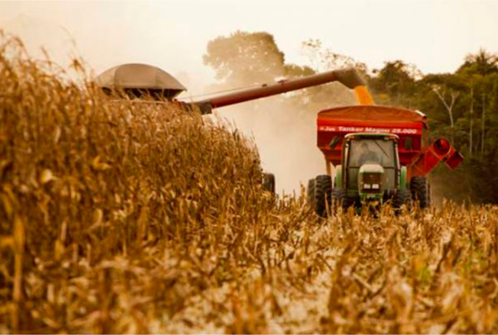 setor-agrícola.png